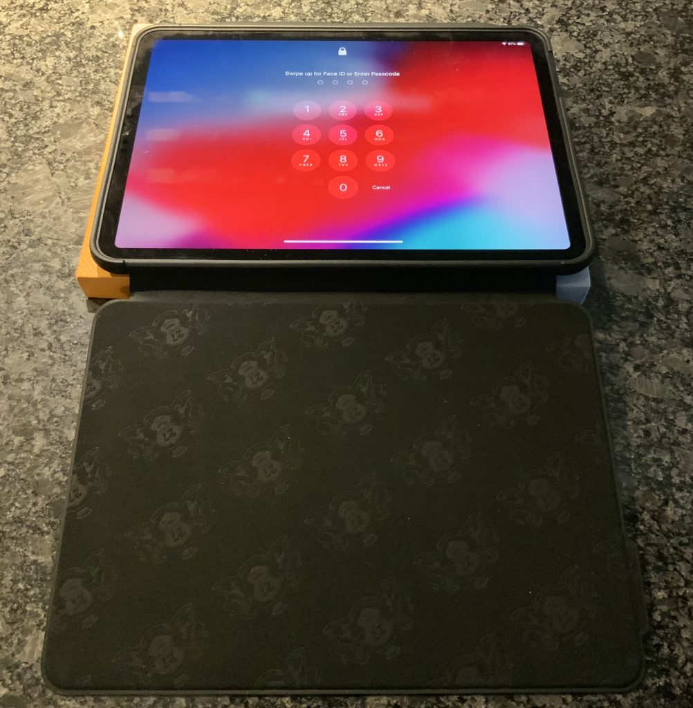 The Muse Case with IPad